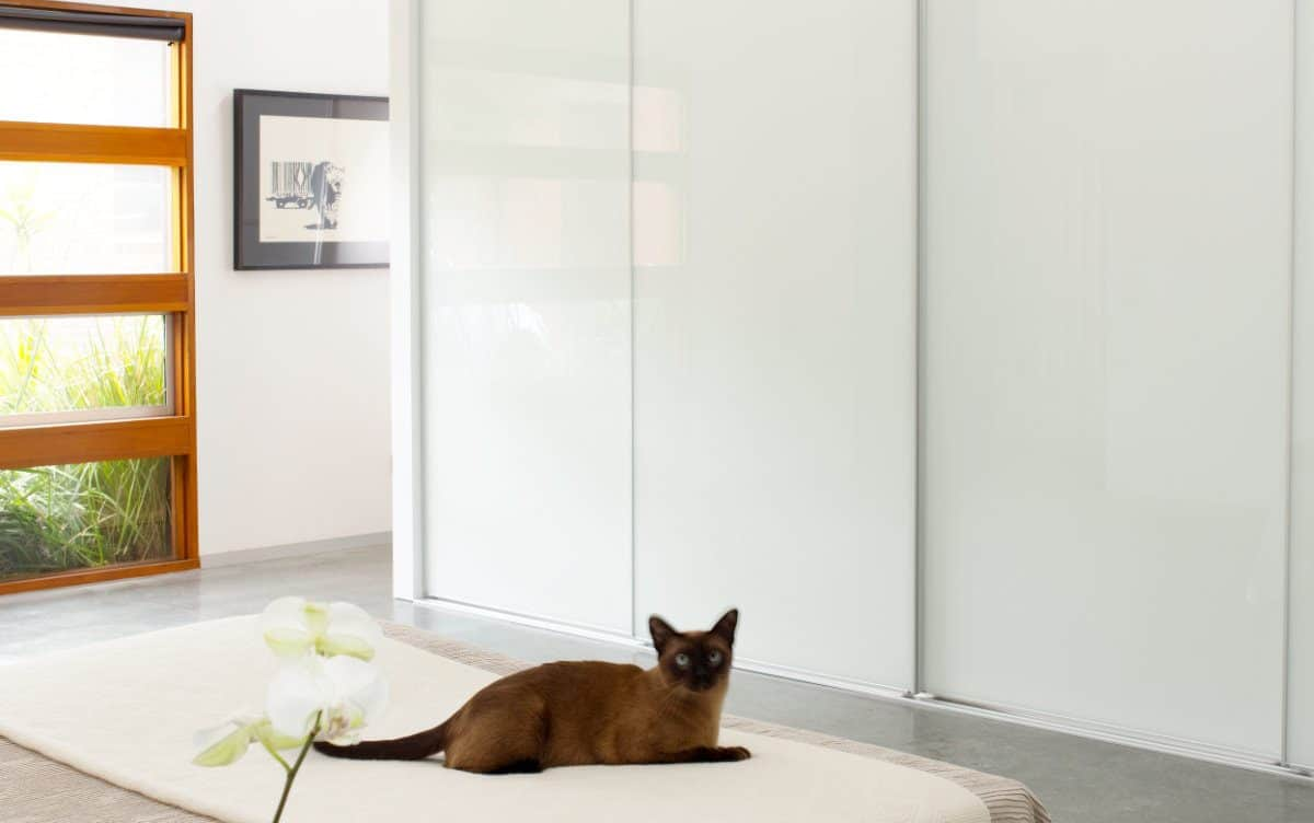 Pivotech wardrobe doors White Glass cat